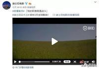 章子怡、李冰冰、劉亦菲、劉詩詩,中國現役女星打戲Top4