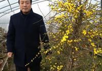 西安市鄠邑區餘下鎮西屯村吳高建卞民安李強打造山河盆景苑花開了