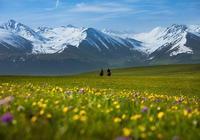 塞外江南——走進新疆伊犁草原巔峰自然風光