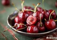 你吃過最貴的水果是什麼?