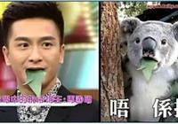 熬了19年還沒拿到視帝的馬國明,TVB不值得!