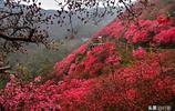 武漢黃陂雲霧山,四季皆風景,不僅有春天的杜鵑花海