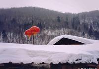 雪之靈 雪之心
