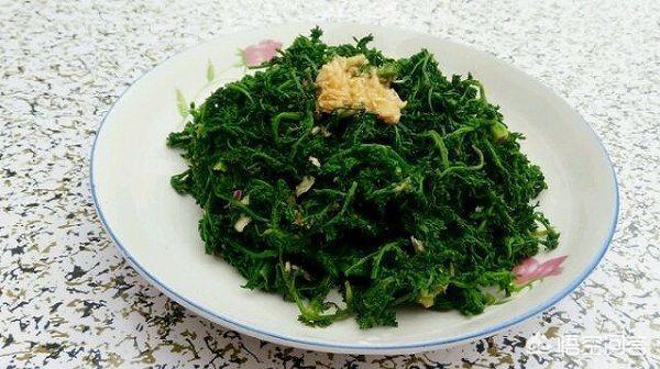播娘蒿是農村麥地裡一種雜草,也是春天常見野菜,有吃過嗎?會有哪些美食做法?