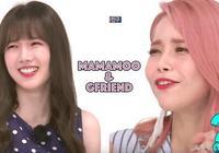 MAMAMOO&GFriend「興」對決!《一週偶像》「逼格idol」沒包袱競賽鹿死誰手?