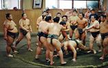 日本相撲運動員 相當不容易