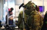 鐵血軍事:不一樣的大兵,看列國特種部隊!你認識幾個?