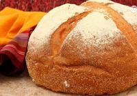 我國今曰玉米澱粉替代麵粉,明曰小麥飼料替代是否會迴歸