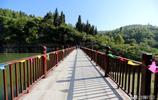 這裡風景優美,這裡有百米高玻璃橋,還有稀有的國家二級保護植物
