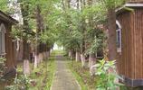 自然風光,田園野趣的世外桃源,大千生態莊園