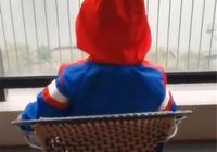 寶寶吃飯後搬個板凳靜靜坐在窗前,媽媽好奇走過去看,瞬間笑噴了