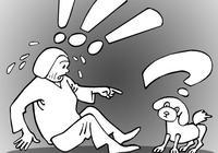 小狗起身驚嚇老太摔傷致殘 狗主人該不該賠?