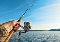 走,週末有空釣魚去?