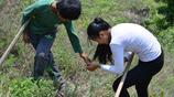 山東農村姐弟挖丹蔘為父治病,辛苦半天挖到一株,餓了吃鹹菜煎餅