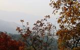 香山風景,蔚為壯觀的香山風景