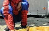 超級有愛 美國男孩扮超級英雄照顧流浪貓