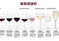 葡萄酒知識:葡萄酒選杯攻略