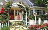 等我退休了,也要回鄉下住,瞧村裡伯父家的庭院佈置,誰住誰舒適