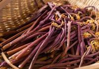 吃蕨菜會致癌?蕨根粉還能不能吃?營養師告訴你是謠言還是真相