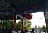 北京三環內這個免費公園,新增11個景點,可以站在水裡賞荷花,看游魚!