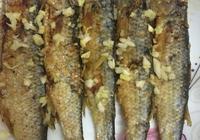 遇到這種魚大家不要手軟,含鈣量特別高常給孩子吃,個子長得高