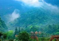 打卡清遠這5家網紅森林民宿,靜謐的可以聽雨喝茶看書丨南方民宿