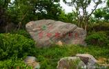 航拍濟南華山溼地公園,再現鵲華煙雨美景