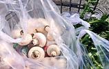 鮮美口蘑搭配多汁肉丸 春天裡口蘑釀肉吃出爆棚幸福感