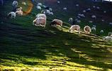 風景圖集:風景優美的帕米爾高原