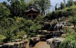 重慶照母山森林公園,居然隱藏這一片網紅梅花林,可惜人太多了