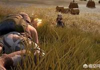 《刺激戰場》有玩家建議在草叢中添加毒蛇,長時間伏地將引來毒蛇攻擊,你覺得可行嗎?