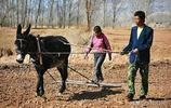 農民一輩子不容易,60歲以後該不該有退休金,網友說的合情合理