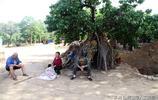 實拍:河南豫西地坑村的夏收季節,看看農民生活成啥樣