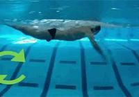 蝶泳難學嗎?需要準備什麼?
