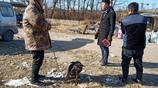 農村大哥賣自家狗狗,三人將其塞進袋子,30多裡地,看看咋回事