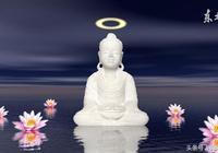 一花一葉一菩提:花的世界,心靈的力量