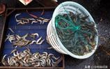 旅遊旺季 青島海鮮買賣紅火 早市大蝦日銷2000斤 價格穩中有降