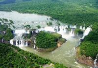 南美叢林橫著走的頂級殺手,鱷魚躲著走,蟒蛇只能選擇捨命相搏
