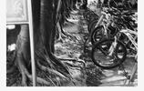 圖蟲黑白攝影:黑白
