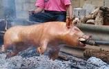"""農村純原生態""""燒豬"""",只有特定的節日才吃得到!"""