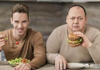 早餐吃兩個水煮蛋加一個蘋果,中餐吃八分飽,晚飯吃一個蘋果,會達到減肥的效果嗎?