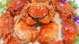 秋風起,蟹腳癢!又到吃蟹好時節,教你如何挑到肥螃蟹
