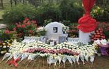 鏡頭下:姚貝娜的墓地,鮮花簇擁!
