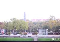 上海你是怎樣的上海