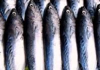 蔡瀾:海魚一養,鮮味盡失