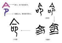 """《說文解字》第160課:細說""""命""""字"""