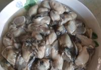 哪裡的牡蠣最好吃?