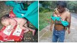 印度剛出生的寶寶被父母丟在垃圾桶裡喂螞蟻,只因她不是一個男孩