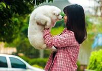懷孕到底能不能養狗?這篇文章讓全家人安心!