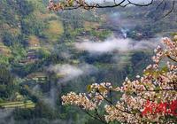 湘西龍山:脈龍山上有座桐花寨